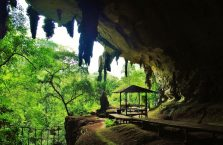 Park Narodowy Niah Borneo (11)