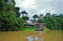 Park Narodowy Niah Borneo (16)