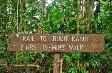 Park Narodowy Niah Borneo (31)