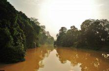 Park Narodowy Niah Borneo (33)