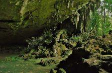Park Narodowy Niah Borneo (5)