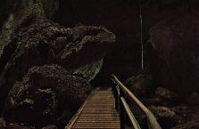 Park Narodowy Niah Borneo (8)