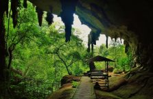 Park Narodowy Niah Borneo (9)