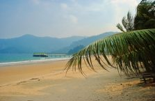 Pulau Tioman (57)