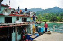 Pulau Tioman (7)