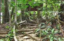 Sohoton Park Samar (36)