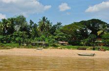 Taman Negara Malaysia (3)
