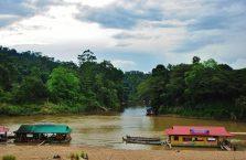 Taman Negara Malaysia (5)
