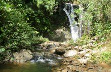 Tawau Hills Park (9)