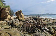 Wierzchołek Borneo (13)