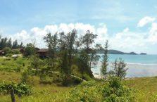 Wierzchołek Borneo (20)