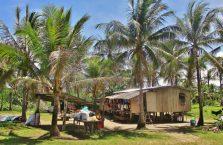 Wierzchołek Borneo (4)