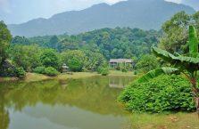 Wioska kulturowa Damai Borneo Malezja (2)