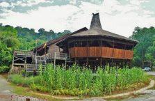 Wioska kulturowa Damai Borneo Malezja (4)