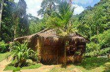 Wioska kulturowa Mari-Mari Borneo (16)