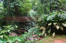 Wioska kulturowa Mari-Mari Borneo (2)