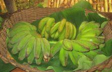 Wioska kulturowa Mari-Mari Borneo (3)