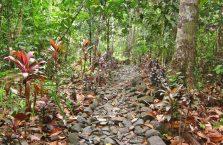 Wodospad Balantak Samar (2)