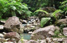 Wodospad Casaroro Negros (5)