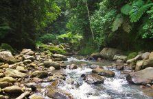 Wodospad Casaroro Negros (7)