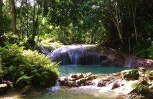 Wodospad Kawasan Siquijor (3)