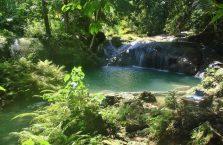 Wodospad Kawasan Siquijor (7)