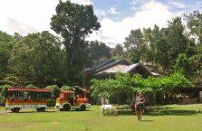 Wycieczka po Bohol (7)