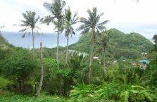 Wyspa Apo (11)