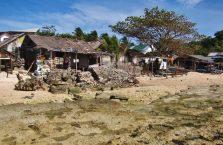 Wyspa Apo (3)