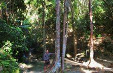 Binalayan falls (3)