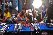 Cebu City (46)