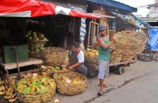Cebu City (7)
