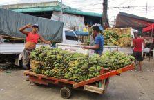 Cebu City (8)