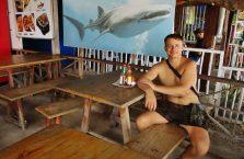 Oslob rekiny wielorybie (4)