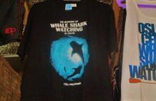 Oslob rekiny wielorybie (5)
