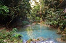 Wodospady Kawasan Cebu (9)