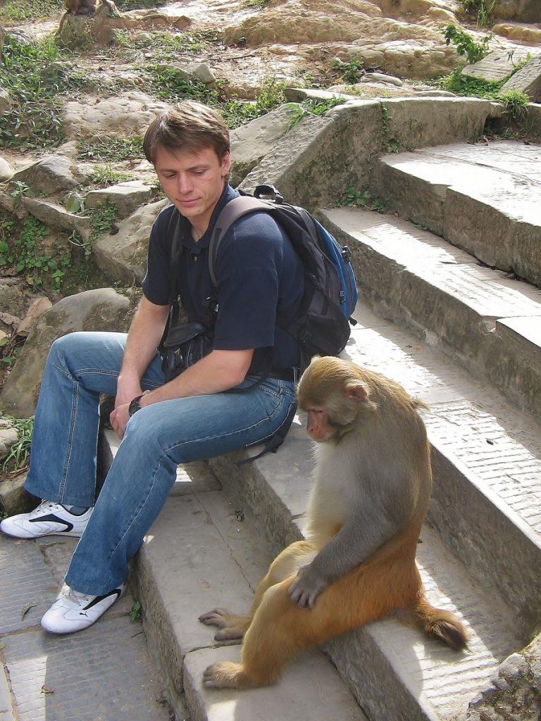 Nepal monkey